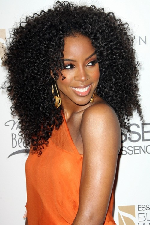 Hairstyles For Black Women 1 Curly