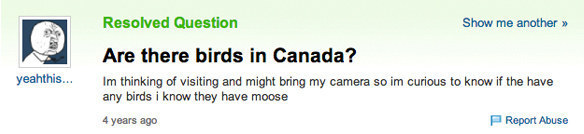 funny yahoo questions 6
