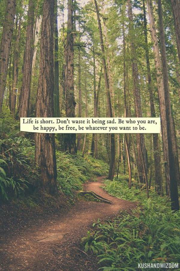 Quotes Nature Inspiration 60 Hippie Quotes With Odd Twists You'll Relish