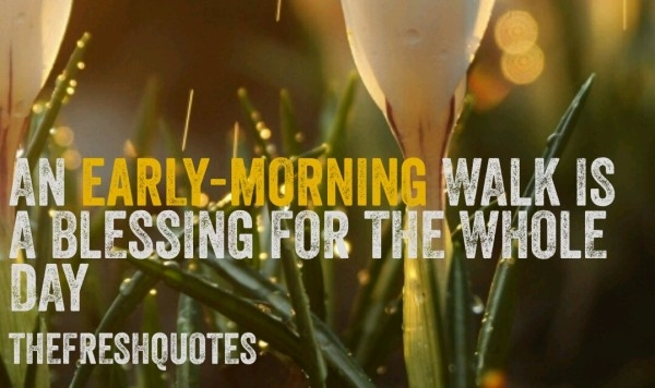 55230216-funny-goodmorning-quotes